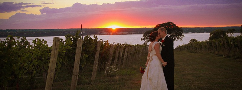 Ventosa Vineyards weddings kiss in the vineyard
